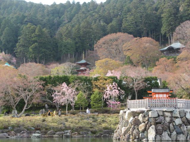 勝尾寺2013-59