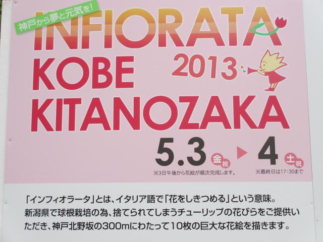 インフィオラータこうべ北野坂2013-26