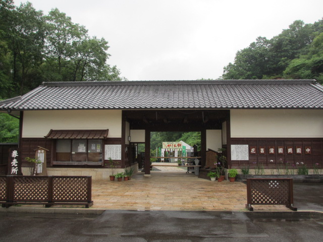 播州山崎花菖蒲園-2