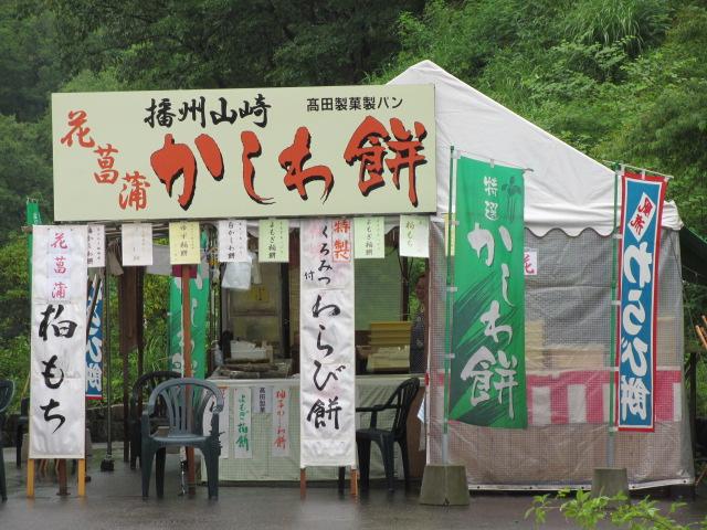 播州山崎花菖蒲園-6