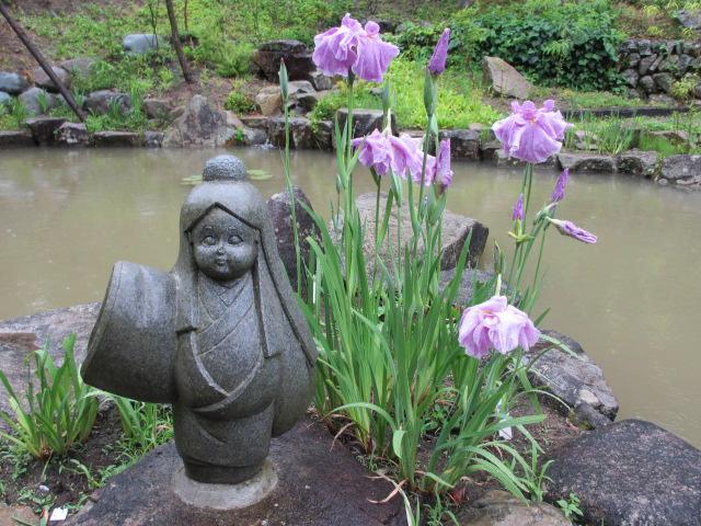 播州山崎花菖蒲園-36