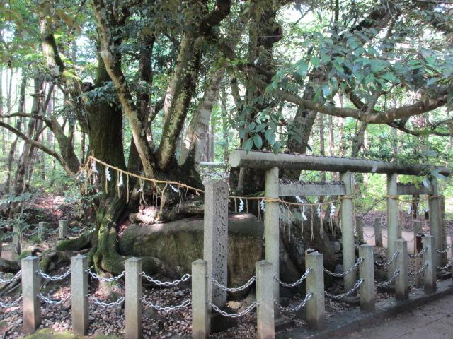 眞名井神社-2