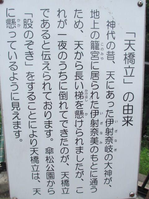 傘松公園-25