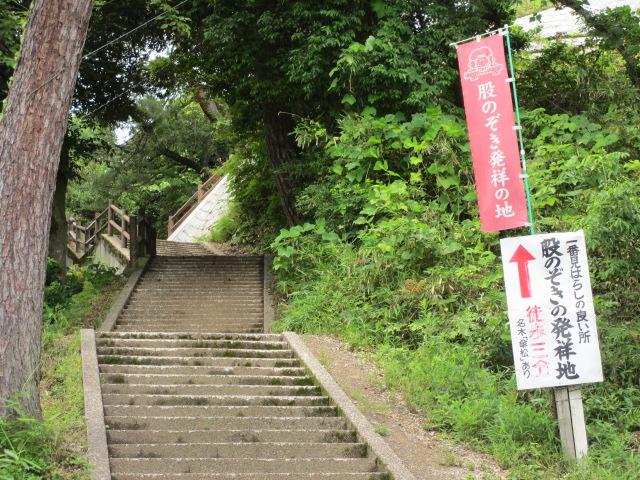 傘松公園-14