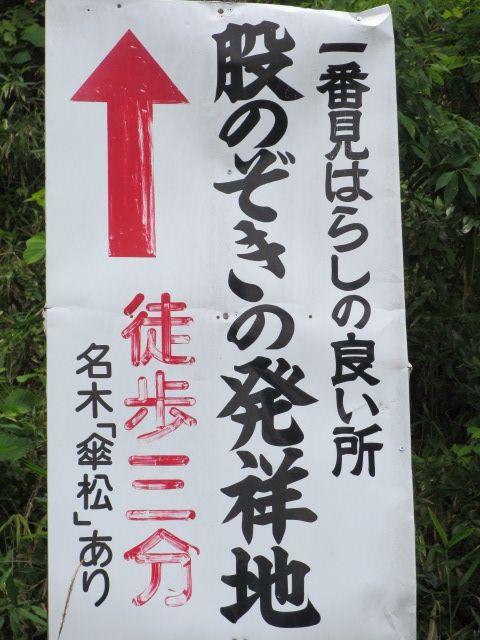 傘松公園-15