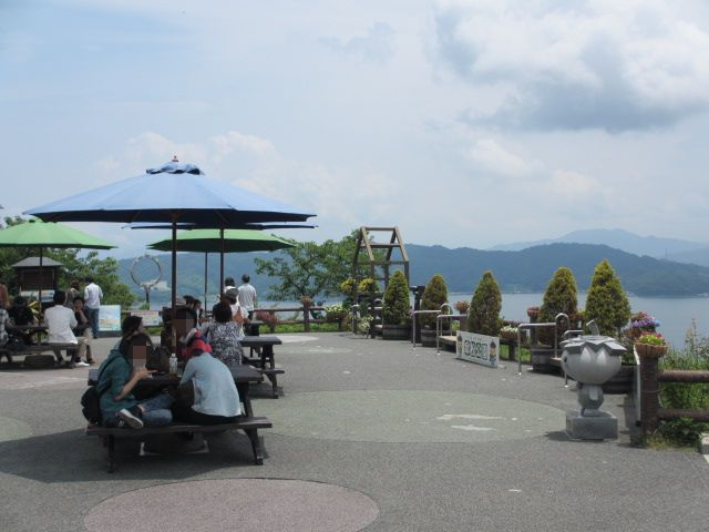 傘松公園-31