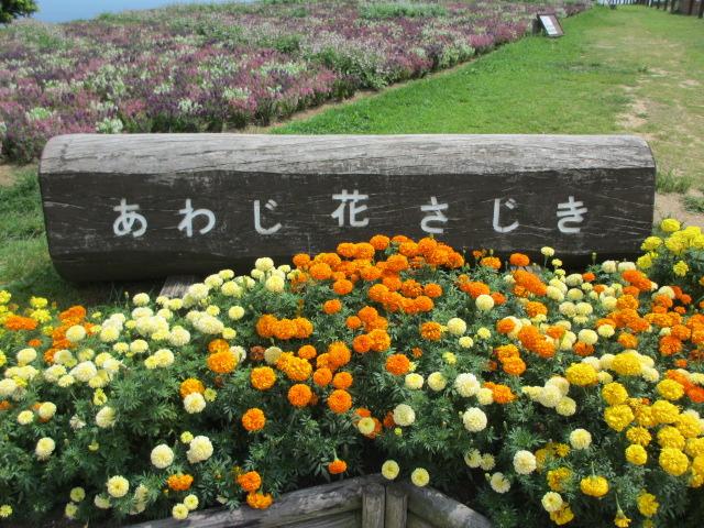 あわじ花さじき2013年8月-1