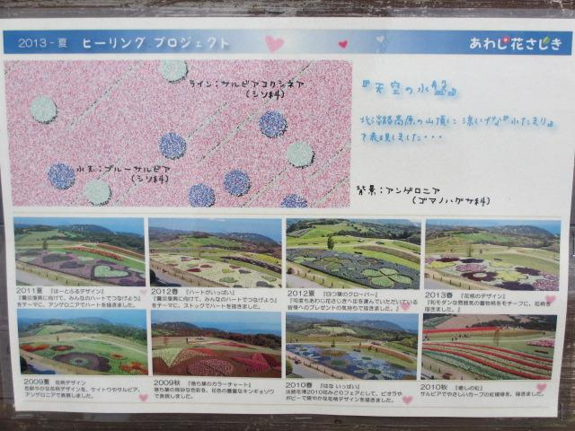 あわじ花さじき2013年8月-11