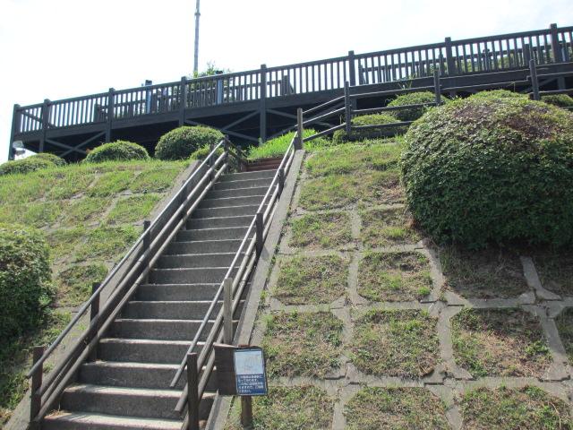 あわじ花さじき2013年8月-9
