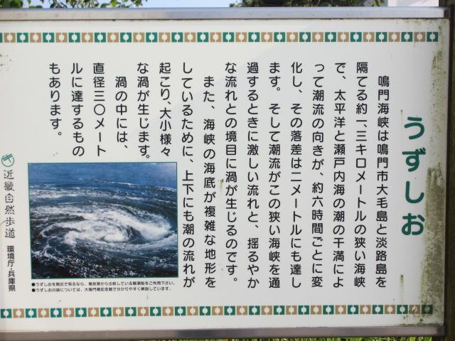 あわじ島バーガー 淡路島オニオンキッチン-5