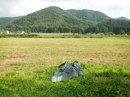 麦刈り後の整地作業 (1)