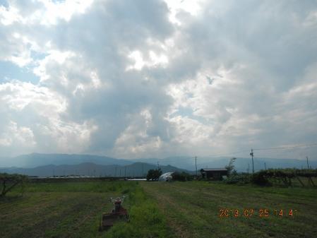 麦刈り後の整地作業 (6)