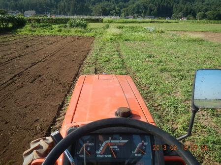 麦畑の耕起