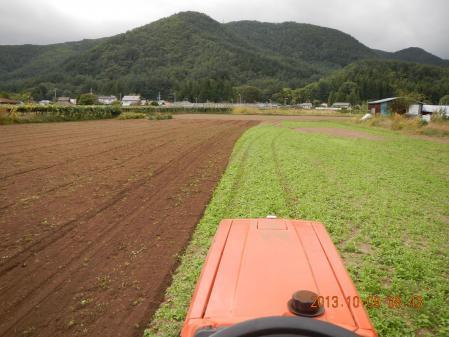 麦畑の耕起作業 (1)