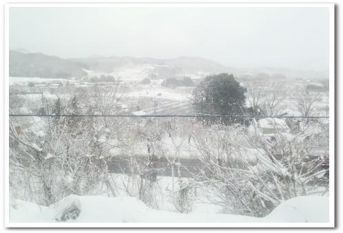 福島経由仙台