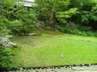 井中居庭と鳩