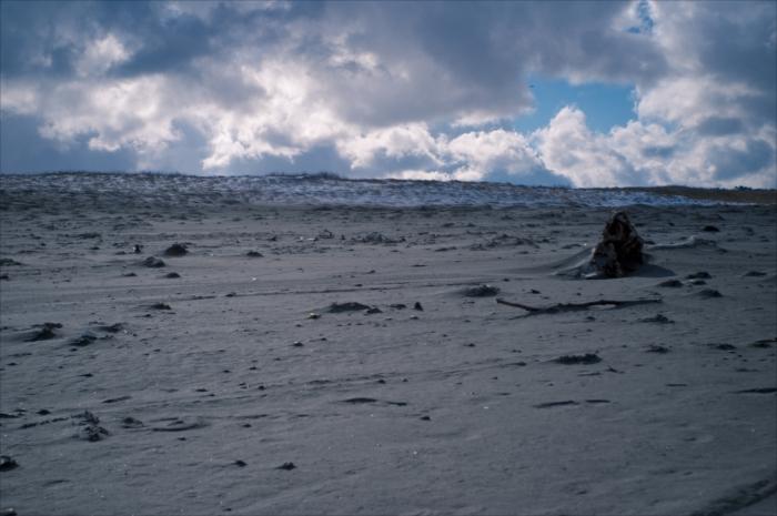 ikarashi_beach