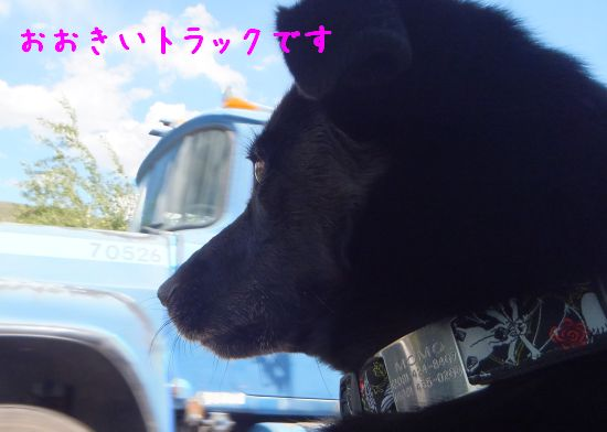 130701_02.jpg