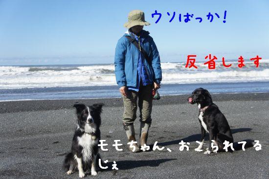131004_29.jpg
