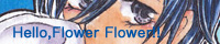 Hello,Flower Flower!!