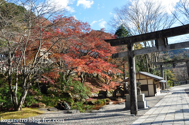 2014古峯神社の紅葉2