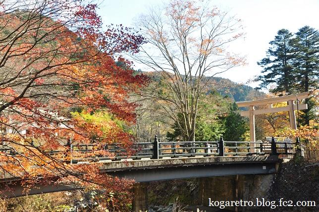 2014古峯神社の紅葉5