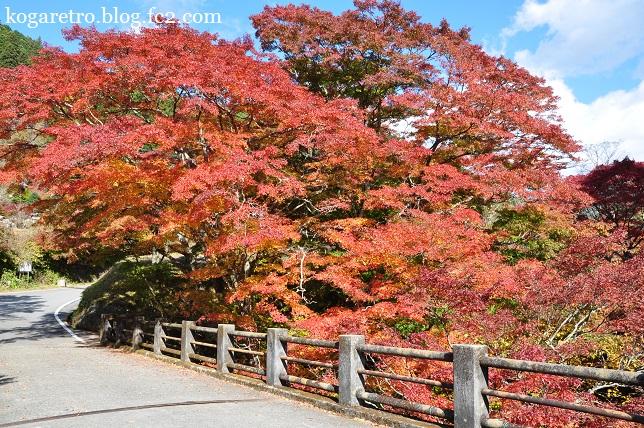2014大芦渓谷の紅葉
