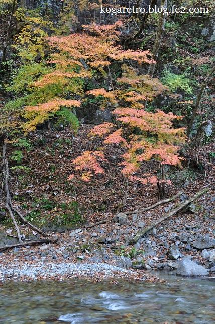 2014大芦渓谷の紅葉2