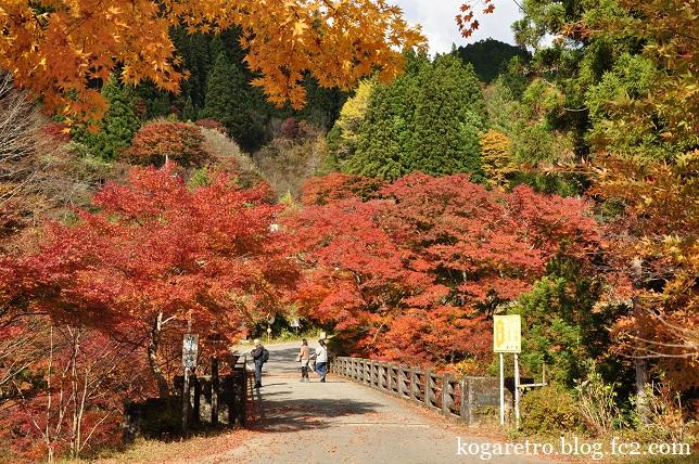 2014大芦渓谷の紅葉4