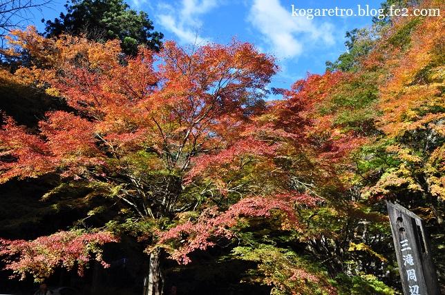 2014蓬莱山の紅葉