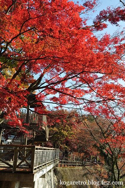 2014太平山の紅葉3