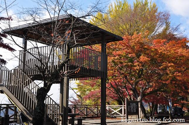 2014太平山の紅葉5