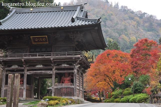 出流山満願寺の紅葉