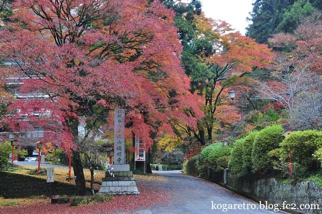 出流山満願寺の紅葉2