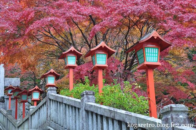 出流山満願寺の紅葉4