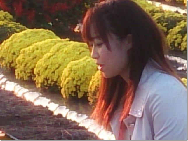 NHK朝の報道番組「おはよう日本」
