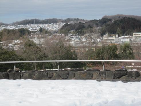 140211 富士見公園-10