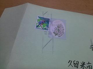 IMG01865 (1)