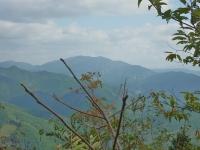 山頂は展望がイマイチ…北東 少し下で枝切りして正面に泉山を眺める