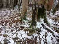 !! 霜柱と喜んだ…しかし、次第に雪が…