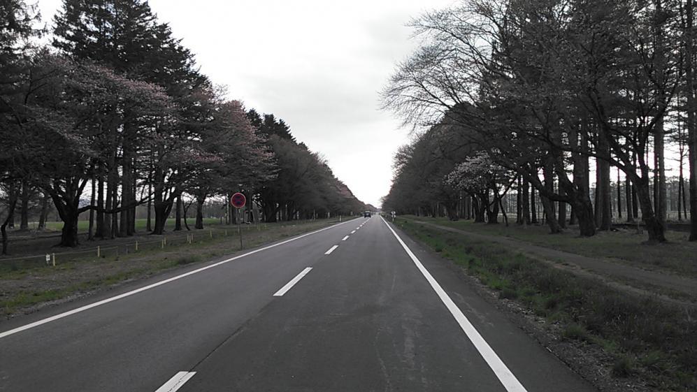 NCM_0511.jpg