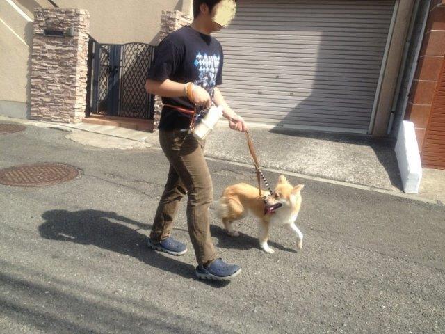 20130521散歩1