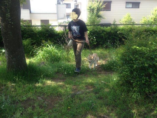 20130521散歩2