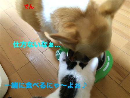 13_2014120821024066f.jpg