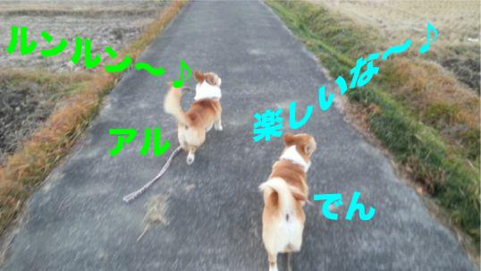 1_20131210190933e00.jpg