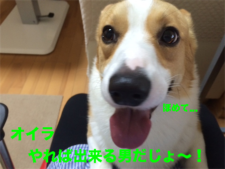 2_201410181041574bb.jpg