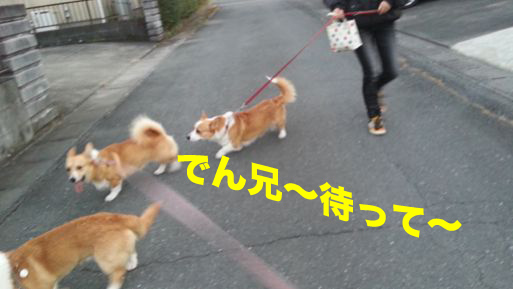 3_20131202114604ae9.jpg