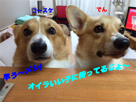 3_2014102511195123e.jpg