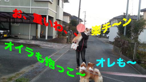 8_20131202114948d4a.jpg