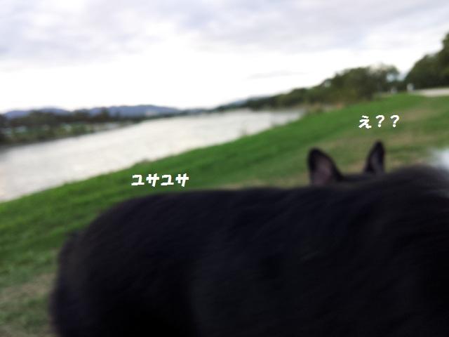20130905_173013.jpg